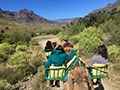 Camel Ride Dunes Oasis Adventure