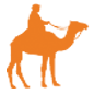 Riding Camels on a Safari in Gran Canaria
